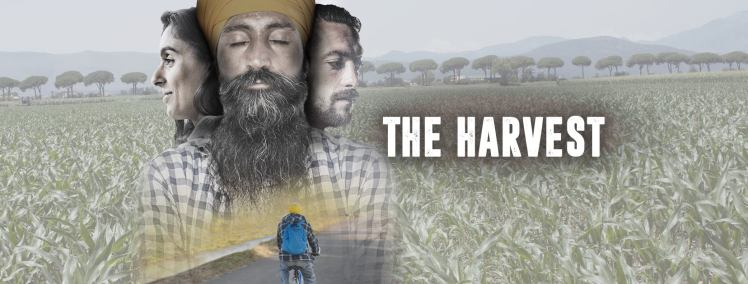 the-harvest-cover-facebook.jpg